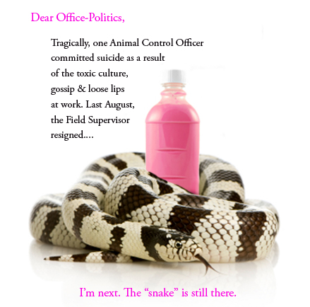 photo illustration by Franke James; snake photo ©istockphoto.com/ Eric Isselée pink medicine photo ©istockphoto.com/ Karin Lau
