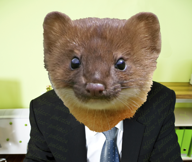 office politics the role rewards of an office weasel